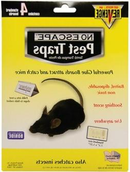 Glue Traps for Mice and Insects  Capture Mice Spiders Scorpi