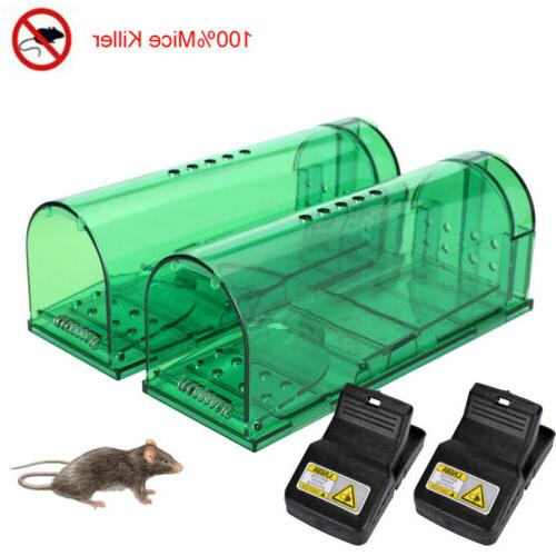 2x rodent animal mouse humane rat live