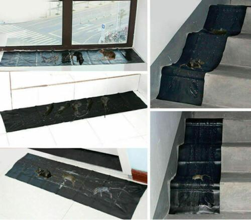 47 Inch Glue Traps Rodent Rat Board Snake