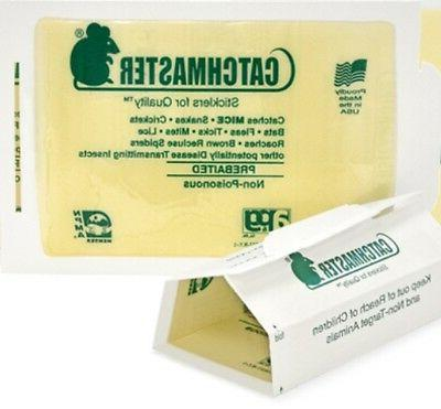 72 Catchmaster Mouse Insect Glue Boards 72mb Mice Roach Spid