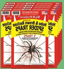 BROWN RECLUSE HOBO SPIDER TRAPS Safe Effective 25 traps or 5