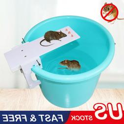 Walk The Plank Mouse Trap Rodent Bucket Trap Rat Auto Reset