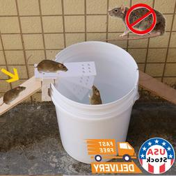walk the plank mouse trap rodent bucket